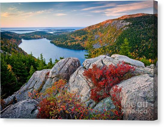 Red Rock Canvas Print - Jordan Pond Sunrise  by Susan Cole Kelly