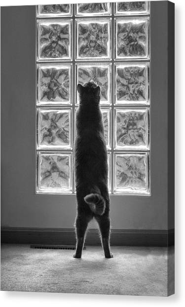 Joseph At The Window Canvas Print