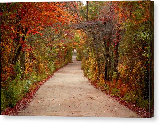 Journey Canvas Print by Linda Drown