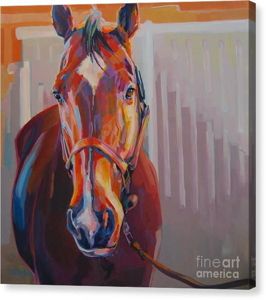 Bay Horse Canvas Print - JT by Kimberly Santini