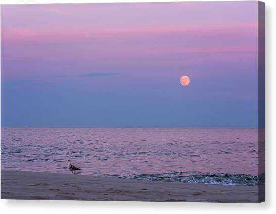 Wolf Moon Canvas Print - July Full Moon 2016 Lavallette Nj by Terry DeLuco