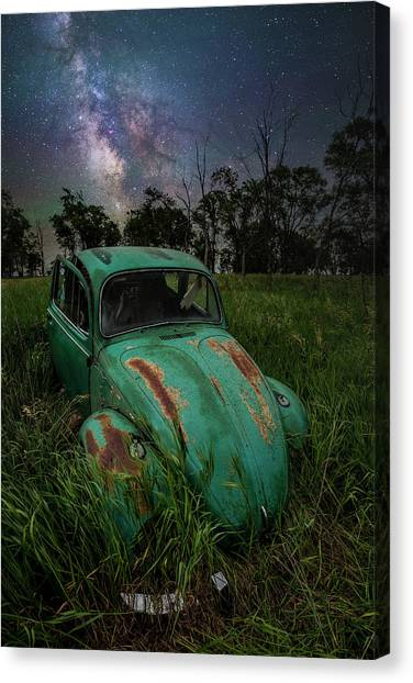 Canvas Print featuring the photograph June Bug by Aaron J Groen