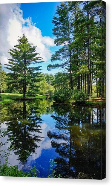June Day At The Park Canvas Print