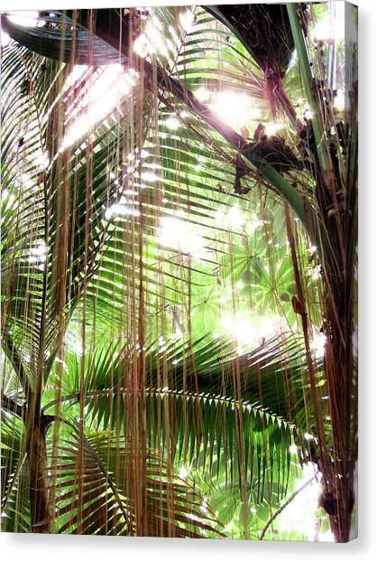 Jungle In There Canvas Print