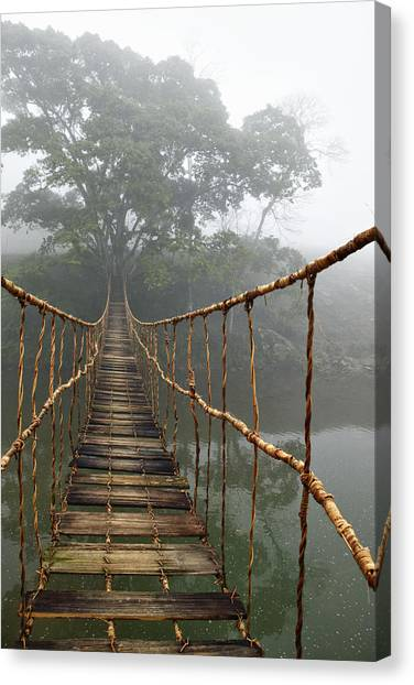 Rope Canvas Print - Jungle Journey 2 by Skip Nall