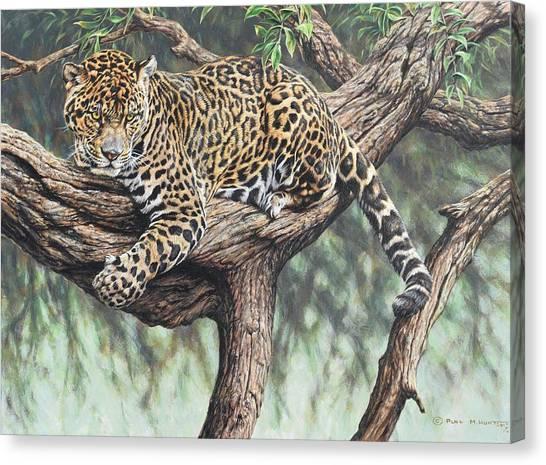 Jungle Outlook Canvas Print