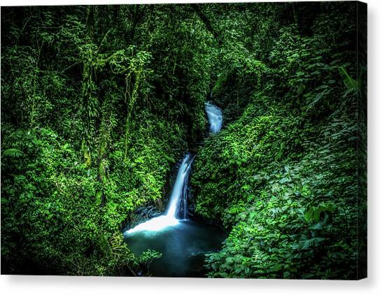 Rain Forest Canvas Print - Jungle Waterfall by Nicklas Gustafsson