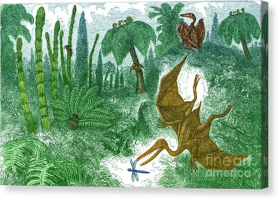 Pterodactyls Canvas Print - Jurassic Landscape by Science Source