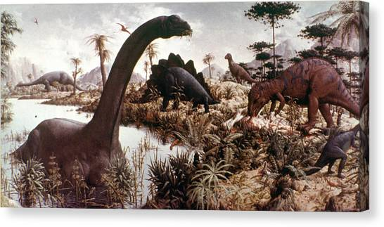 Brontosaurus Canvas Print - Jurassic Swamp by Granger