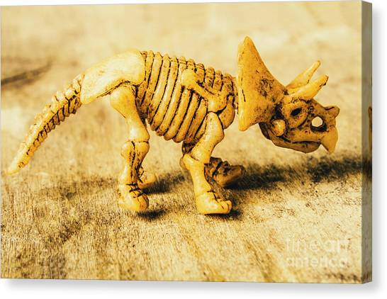 Biology Canvas Print - Jurassic Toy Triceratops by Jorgo Photography - Wall Art Gallery
