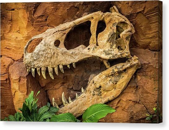 T-bone Canvas Print - Jurassica by Wim Lanclus