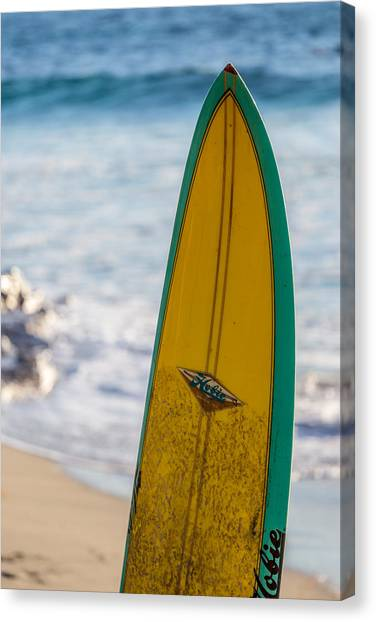 Just A Hobie Of Mine Canvas Print