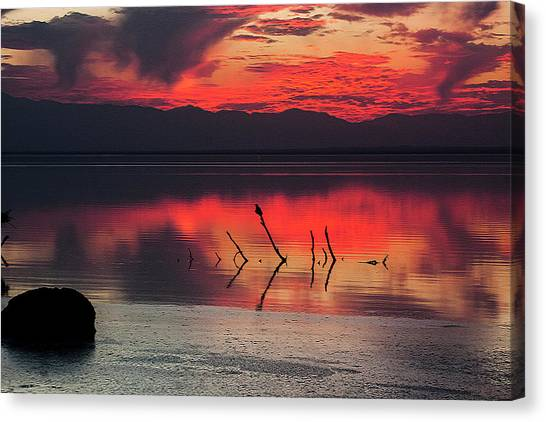 Canvas Print featuring the photograph Just Beneath The Surface by Mike Trueblood