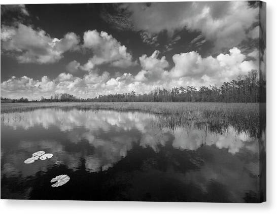 Canvas Print - Just Breathe In Black And White by Debra and Dave Vanderlaan