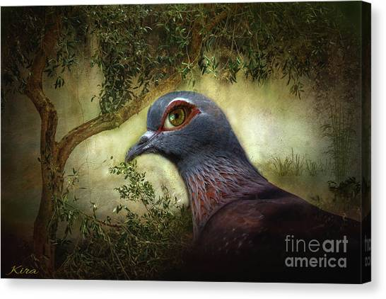 Just Dovey Canvas Print