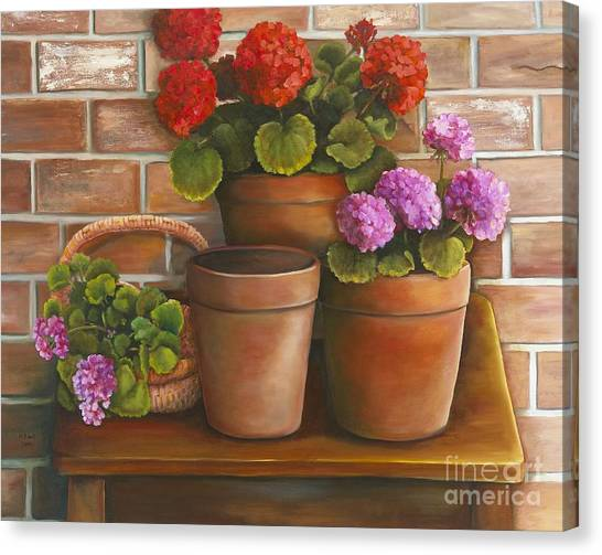 Just Geraniums Canvas Print