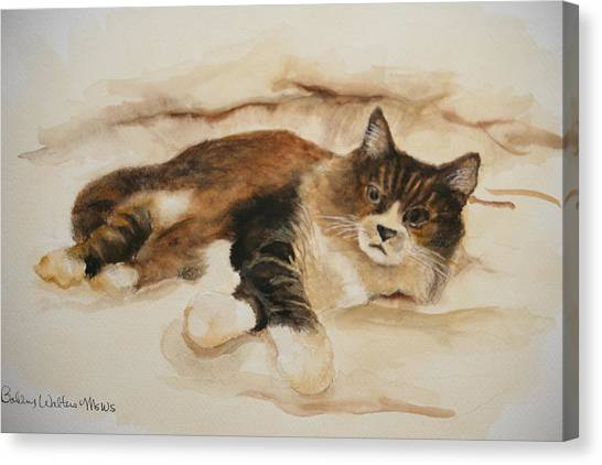 Just Kitty Canvas Print
