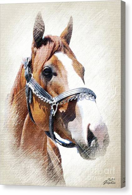 Justify Canvas Print