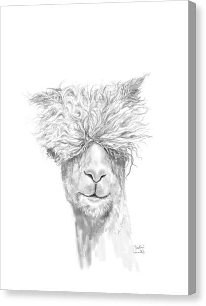 Llamas Canvas Print - Justin by K Llamas