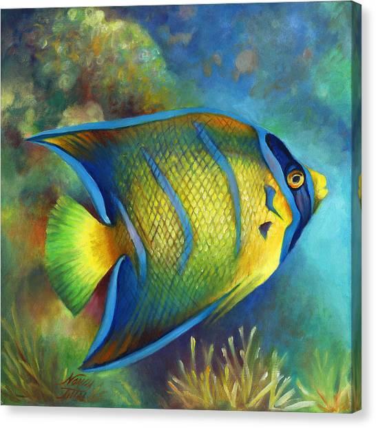 Juvenile Queen Angel Fish Canvas Print