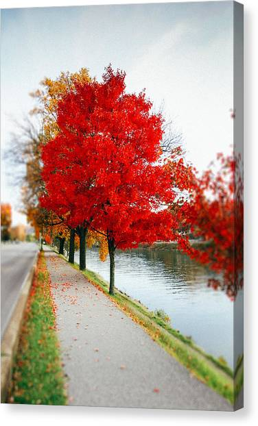 Kanawha Boulevard In Autumn Canvas Print
