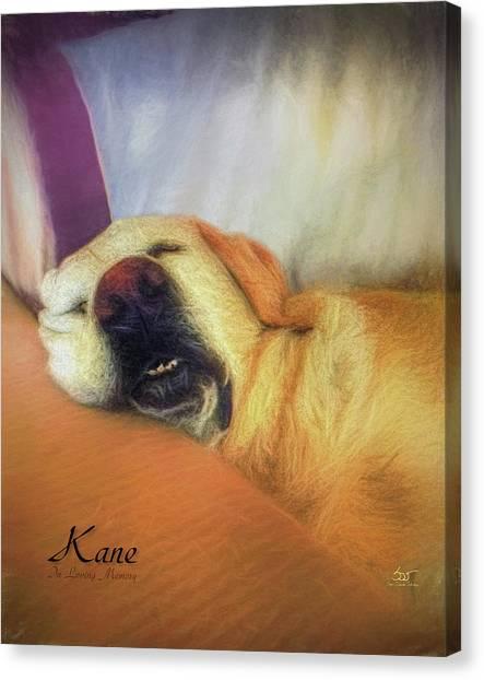 Kane Canvas Print