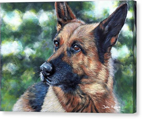 Kasha Canvas Print