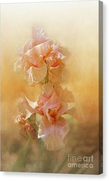 Katerina Canvas Print