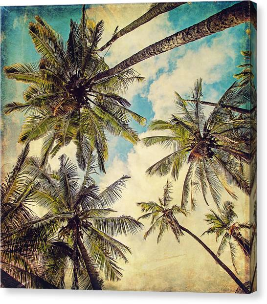 Hawaii Canvas Print - Kauai Island Palms - Blue Hawaii Photography by Melanie Alexandra Price