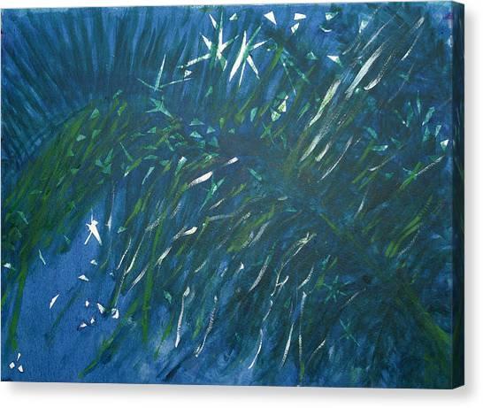 Kauai Night Canvas Print by Adrian Simpson