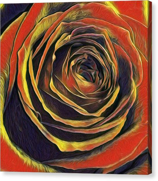 Kayla Rose Canvas Print
