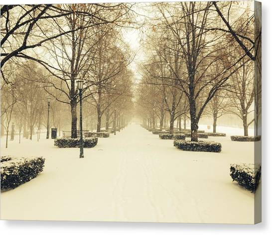 Kc Snow With Parisian Flare Canvas Print
