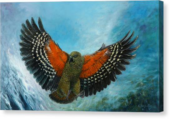 Kea New Zealand Canvas Print by Peter Jean Caley