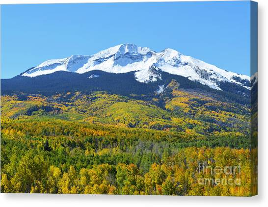 Canvas Print featuring the photograph Kebler Pass by Kate Avery