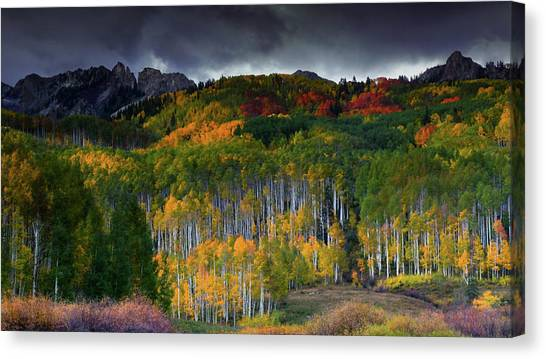 Kebler's Coat Of Many Colors Canvas Print