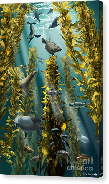 Kelp Forest Canvas Print - Kelp Forest With Seals by Jim Dowdalls