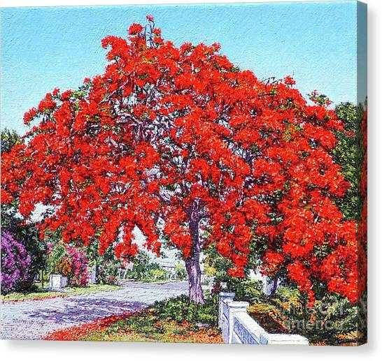 Kent Street - Nassau East Canvas Print