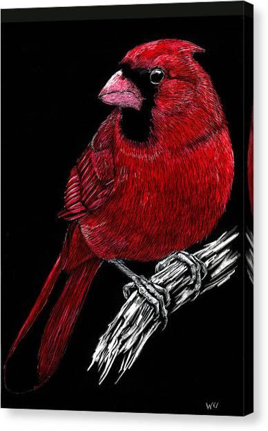 Kentucky Cardinal Canvas Print