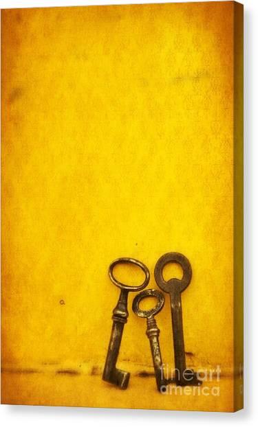 Still Life Canvas Print - Key Family by Priska Wettstein