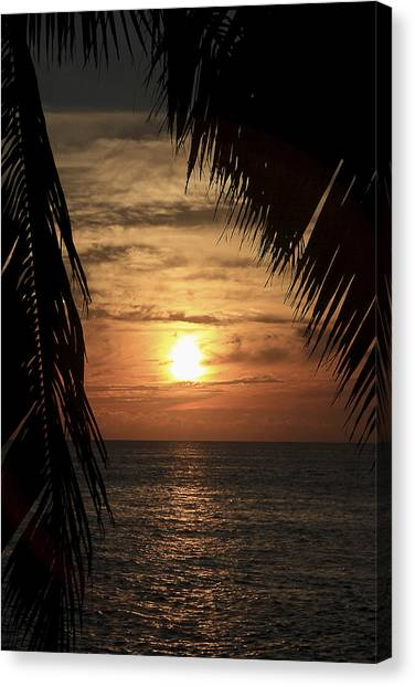 Canvas Print featuring the photograph Key West Palm Sunset 2 by Bob Slitzan