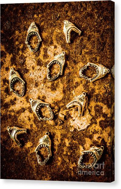 Carnivore Canvas Print - Killer Shark Jaws  by Jorgo Photography - Wall Art Gallery