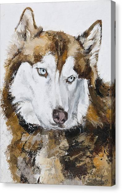 Kind Eyes Canvas Print