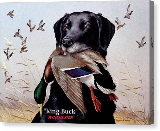 King Buck - 1959-60 Federal Migratory Waterfowl Stamp Artwork Canvas Print