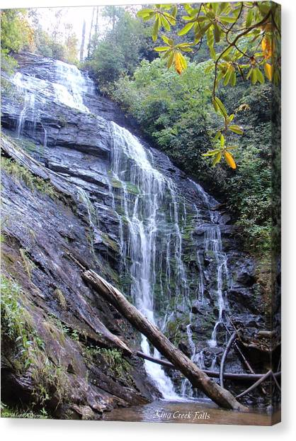 King Creek Falls Oconee County Sc Canvas Print by Lane Owen