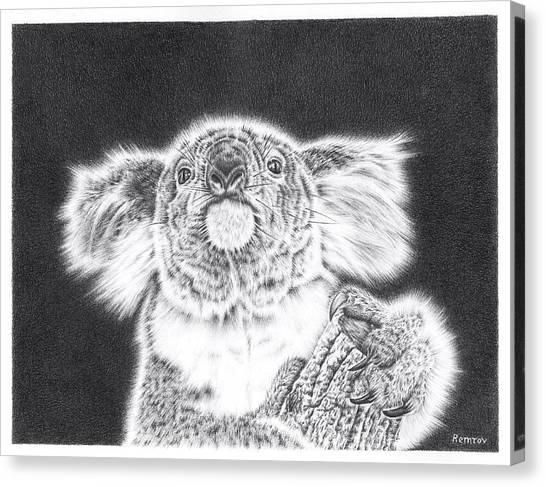 King Koala Canvas Print