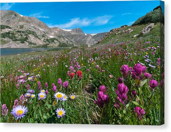 King Lake Summer Landscape Canvas Print