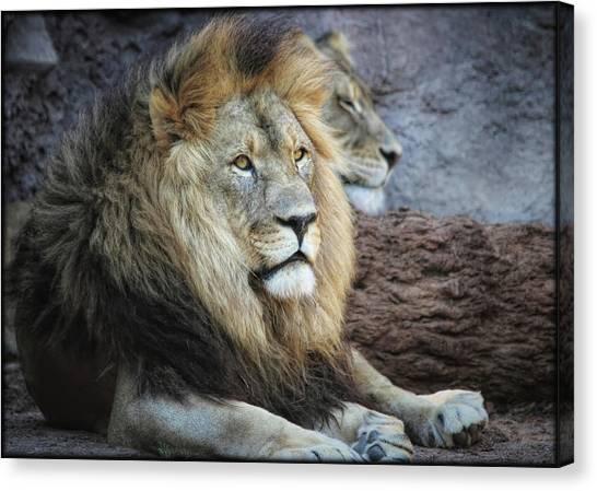 Canvas Print featuring the photograph King N Queen by Elaine Malott