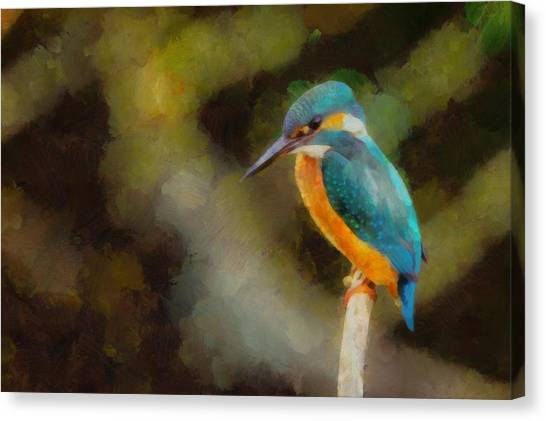 Kingfisher Canvas Print - King Of The Fishers By Pierre Blanchard by Pierre Blanchard
