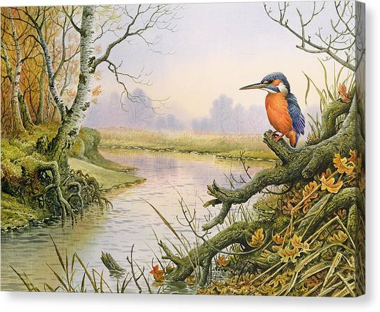 Kingfisher Canvas Print - Kingfisher  Autumn River Scene by Carl Donner