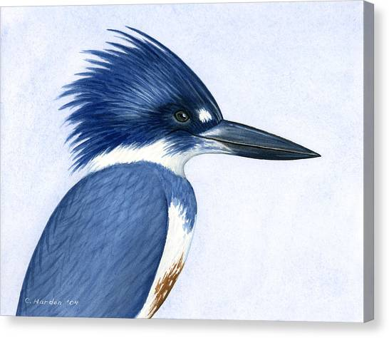 Kingfisher Portrait Canvas Print